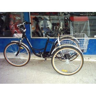 Sp-e-Bikes max Carrier II